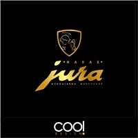 HARAS JURA, Logo e Identidade, Consultoria de Negócios