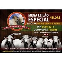 MEGA LEILAO ESPECIAL( ELITE ), Peças Gráficas e Publicidade, Consultoria de Negócios