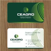 CEAGRO - Consultoria e Planejamento em Agronegócios e Engenharia, Logo e Identidade, Consultoria de Negócios
