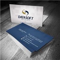 DATASOFT SOLUÇOES, Logo e Identidade, Computador & Internet