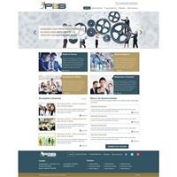Conectando empresas e pessoas, Web e Digital, Consultoria de Negócios