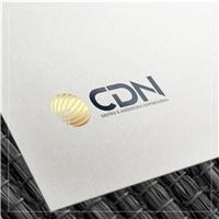 CDN - Gestão e Assessoria Empresarial, Logo e Identidade, Consultoria de Negócios