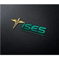 ISES ( Instituto Superior de Ensino de Sinop), Logo e Identidade, Educação & Cursos