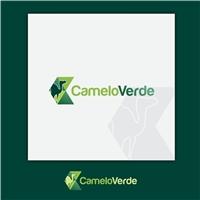 Camelo Verde, Logo e Identidade, Plataforma de comércio eletrônico