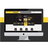 AB ARAUJO & CIA LTDA, Web e Digital, Animais