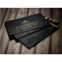 Resort Magnifico , Logo e Identidade, Viagens & Lazer