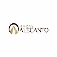 Haras Alecanto, Logo e Identidade, Animais