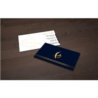 Fagundes Consultoria Empresarial, Logo e Identidade, Consultoria de Negócios