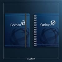 Cochan, Logo e Identidade, Consultoria de Negócios