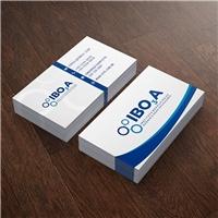 Instituto Brasileiro de Ozônio e Suas Aplicações, Logo e Identidade, Educação & Cursos