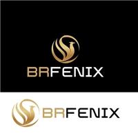 BrFenix, Logo e Identidade, Outros