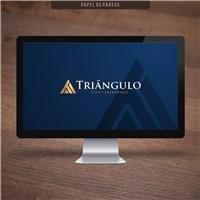 Organização Contábil Triângulo S/S ltda, Logo e Identidade, Contabilidade & Finanças