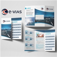 E-VIAS EMPRESA LATINO AMERICANA DE CONSULTORIA VIÁRIA LTDA., Apresentaçao, Construção & Engenharia