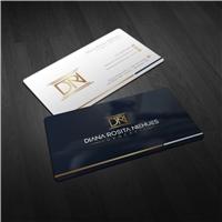 Diana Rosita Niehues Advocacia, Logo e Identidade, Advocacia e Direito