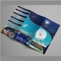 Barras  de Access - Expansão de consciência, Apresentaçao, Outros