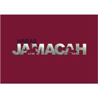 Haras JAMACA , Logo e Identidade, Animais