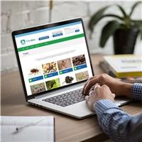 TTEC GRÃO SERVIÇOS DE IMUNIZAÇÃO LTDA, Web e Digital, Ambiental & Natureza