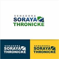 Senadora Soraya Thronicke, Logo e Identidade, Outros
