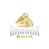 Dragon King, Logo e Identidade, Saúde & Nutrição