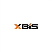 XBIS Serviços Empresariais e Tecnologia Ltda., Logo e Identidade, Consultoria de Negócios