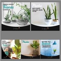 Jardineria: ateliê de plantas, Web e Digital, Paisagismo & Piscina