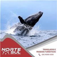 Norte Sul , Web e Digital, Viagens & Lazer