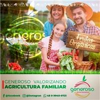 Comercio De Frutas Orgânicas Generoso Ltda Me, Web e Digital, Alimentos & Bebidas