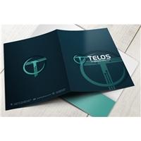 Telos Tecnologia Evolutiva Ltda, Logo e Identidade, Tecnologia & Ciencias