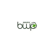GRUPO BWP, Logo e Identidade, Outros
