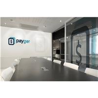 PAYGER, Logo e Identidade, Contabilidade & Finanças