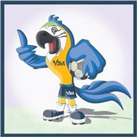 Vale Sports Eventos Esportivos  /   Futebol, Construçao de Marca, Esportes