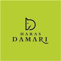 HARAS DAMARI, Logo e Identidade, Outros