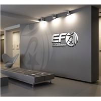 EF SPORTS MANAGEMENT , Logo e Identidade, Esportes