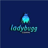 Ladybugg Cleaning , Logo e Identidade, Limpeza & Serviço para o lar
