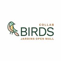 Birds, Logo e Identidade, Roupas, Jóias & acessórios