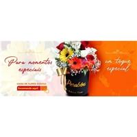 Ikebana Flores, Marketing Digital, Outros