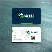 Brasil Ambiental, Logo e Identidade, Construção & Engenharia