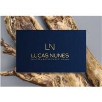 Lucas Nunes , Logo e Identidade, Beleza