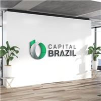 Capital Brazil, Logo e Identidade, Contabilidade & Finanças