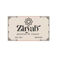Ziryab Guitarras, Logo e Identidade, Música