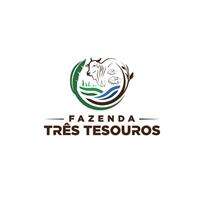 FAZENDA TRÊS TESOUROS, Logo e Identidade, Outros