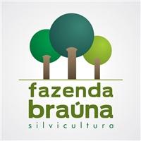 Fazenda Braúna www.fazendabrauna.com.br, Logo, Silvicultura (mogno e cedro)  e produçao de mudas de palmeiras rafis