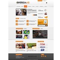Sinergia-MS, Logo em 3D, Associações, ONGs ou Comunidades
