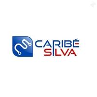 Caribe Silva Solues em Sistemas, Logo, desenvolvimento e suporte de sistemas