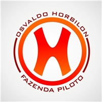 OSVALDO HORBILON- FAZENDA PILOTO, Logo, PECUARIA