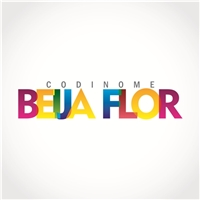 Codinome Beija Flor, Logo, Planejamento de Eventos e Festas