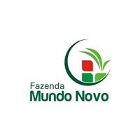 Fazenda Mundo Novo, Logo e Cartao de Visita, Metal & Energia