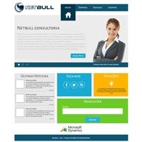 Website Netbull Consultoria, Logo em 3D, Computador & Internet