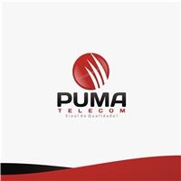 PUMA INTERNET / PUMA TELECOM, Logo, Computador & Internet
