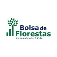Bolsa de Florestas, Logo e Cartao de Visita, Metal & Energia